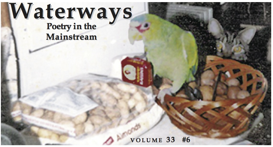 parrot on cover of Waterways: Poetry in the Mainstream