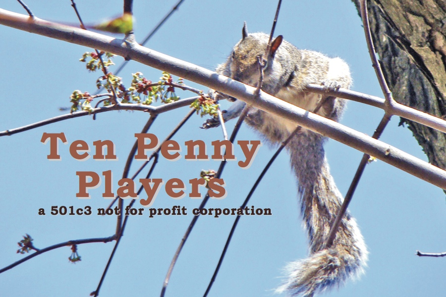 "Squirrel on a branch reaching for the words, ""Ten Penny Players""."